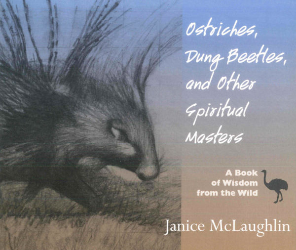Ostriches Dung Bettles Spiritual Masters Cover
